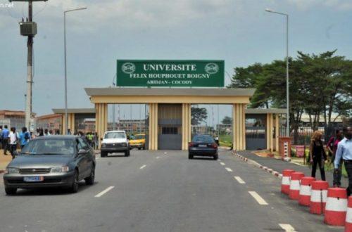 Article : La Côte d'Ivoire est vraiment formidable : une licence en 4 ans… !