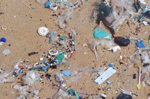 Article : Les plages africaines crient leur ras-le-bol: le cas de Bassam