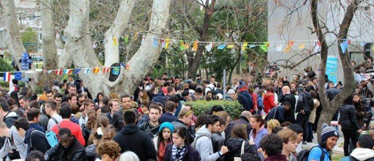 Article : Toulon : plus de 50 mets exposés par des étudiants étrangers