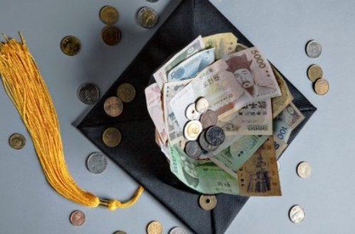 Article : Pourquoi vendre une bourse d'étude ?